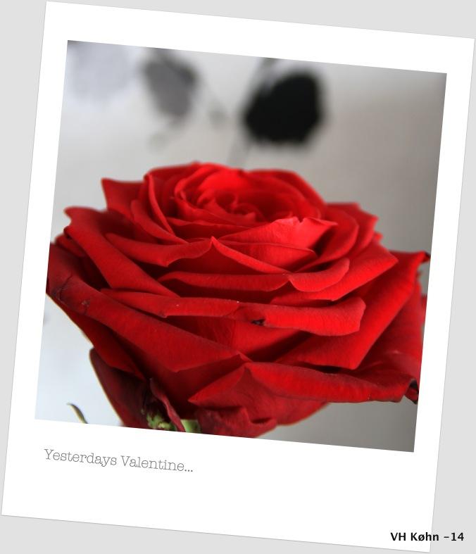 Yesterdays Valentine